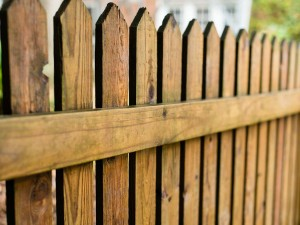 fencing and painting service